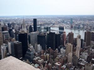 Nowy Jork w obiektywie Papugi